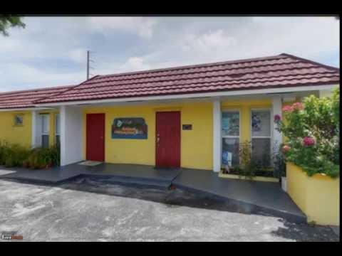Greenfield Animal Hospital | North Miami Beach, FL | Veterinarian
