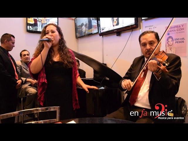 Hallelujah de Cohen - Trío Enfamusic