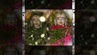 Jevi Rayan Vruksh Ni Chaya || Jain Bhakti Geet || Voice -Jainam Varia (M@lkosh)