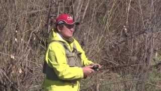 Весенняя ловля ЩУКИ в зарослях . Джиг на микрореках. Ловля щуки весной на джиг.
