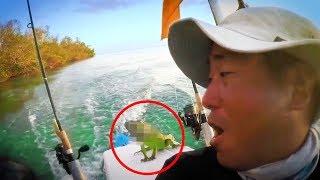 Dieser Kajaker war 5 km vom Ufer entfernt, als er etwas unglaubliches entdeckte