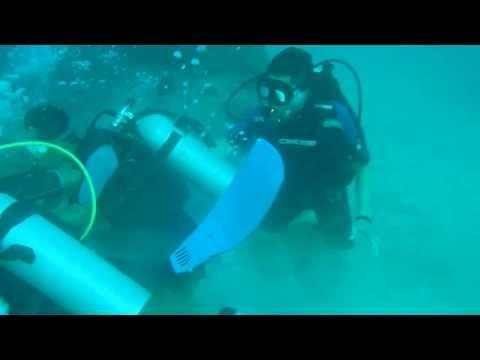 ali redbag diving with hiu karang