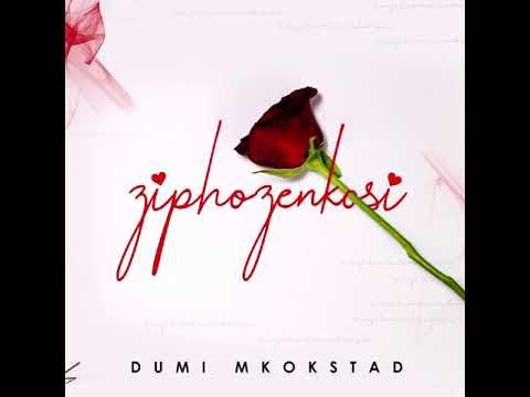 dumi-mkokstad---ziphozenkosi-(official-audio)
