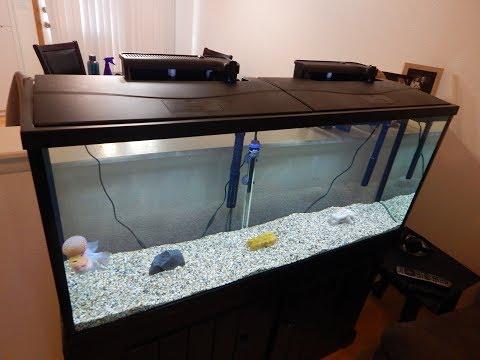 Top Fin Essentials 55 gallon aquarium starter kit!