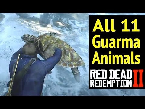 All 11 Guarma Animals In Red Dead Redemption 2 Rdr2 Rare Green