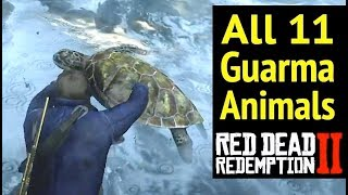 Gambar cover All 11 Guarma Animals in Red Dead Redemption 2 (RDR2): Rare Green Turtle and Locations