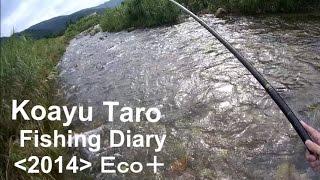 夏の思い出「コアユ釣り」&知内川クリーンアップ【小鮎太郎の釣日記+ECO】