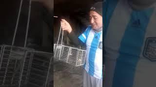 Rata es indultada tras triunfo argentino