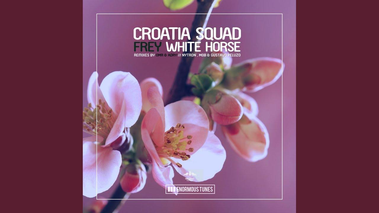 White Horse (Nytron, M0B & Gustavo Peluzo Short Edit)