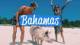 PIG ISLAND - Proudlock & Emma-Lou