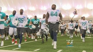Observations From Day 1 Of Dolphins Training Camp