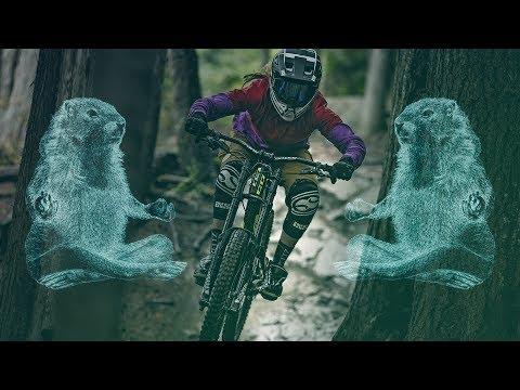 Whistler Mountain Bike Park: Everything Opens