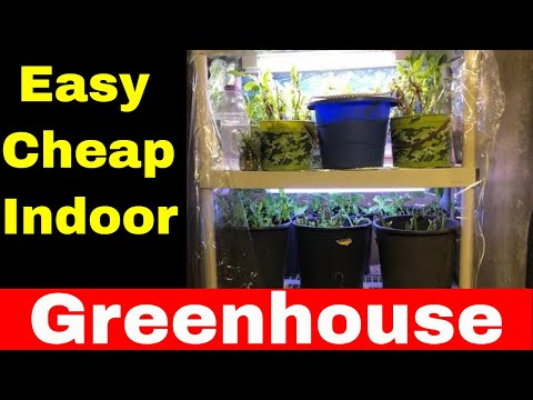 DIY Greenhouse - How To Make An Indoor Greenhouse (Basement Greenhouse)