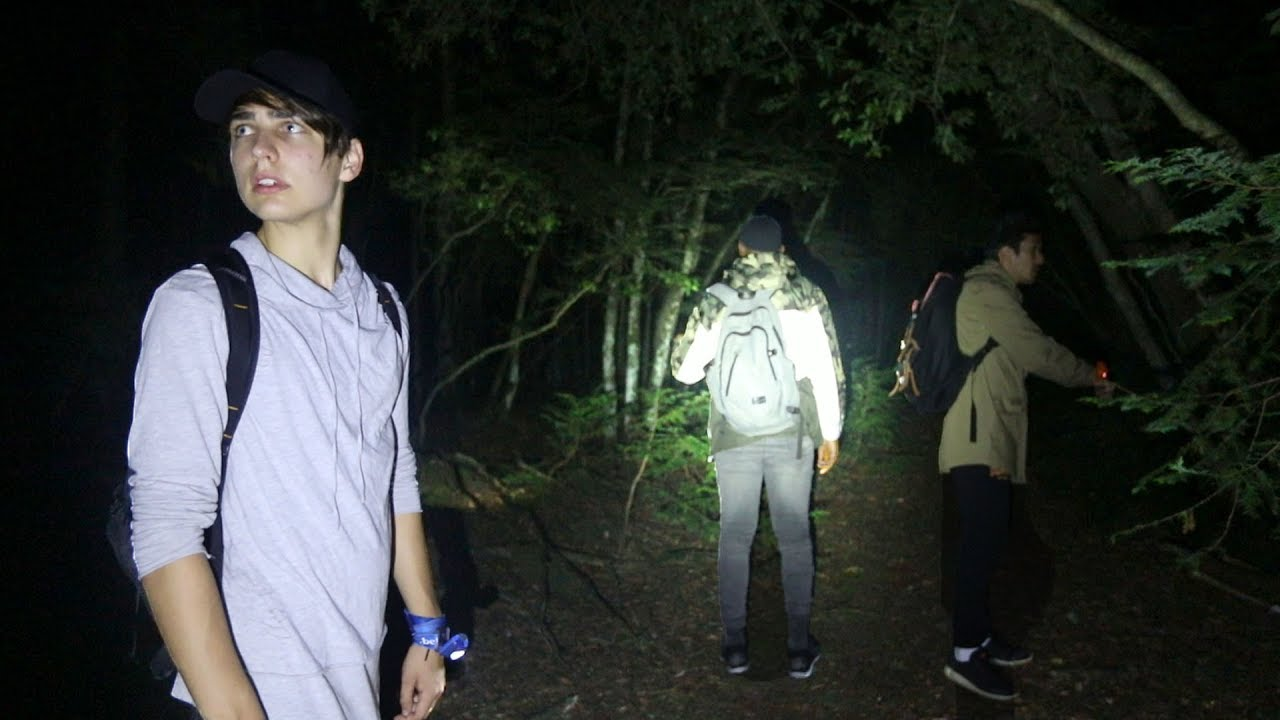 Exploring Suicide Forest.. | Aokigahara, Japan (scary)