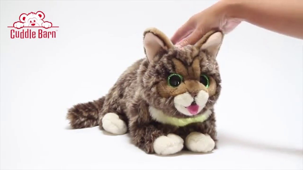 Cuddle Barn Lil Bub Glow And Purr Youtube