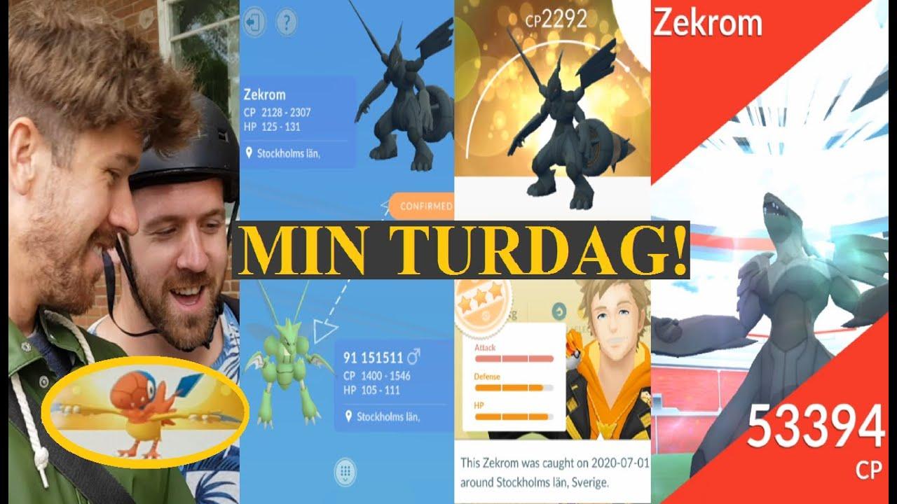 Pokemon GO på Svenska | LUCKY ZEKROM AV MIKAEL! | JAKTEN PÅ 100% ZEKROM! | Johans Pokemon GO