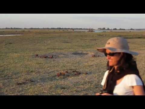 Viaggio di Nozze in Namibia, Zimbabwe, Botswana - Maggio 2013