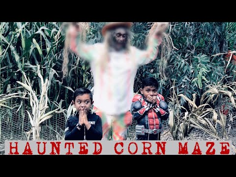 Haunted Corn Maze! 🌾😱