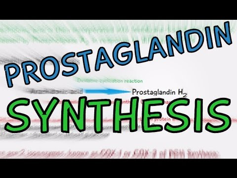 Biochemistry Help: Prostaglandin Synthesis explained in 4 Minutes! How are Prostaglandins made?