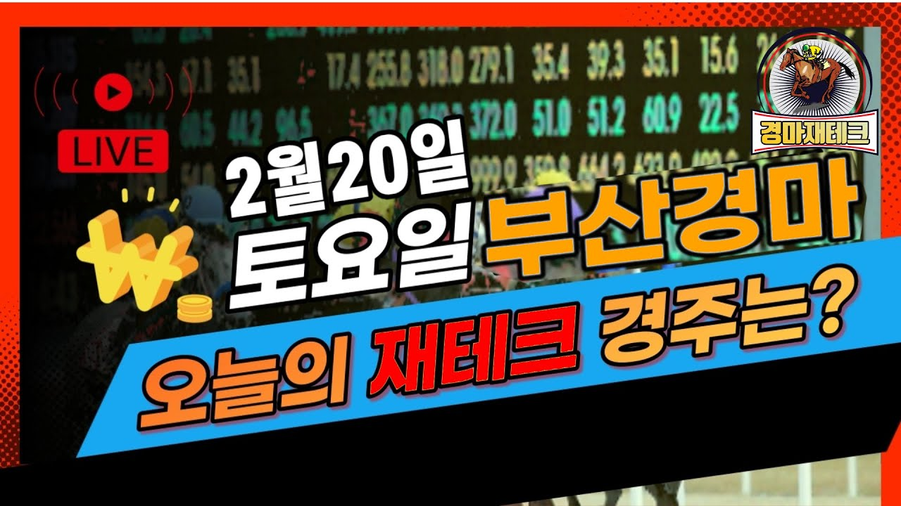 2월20일 토요 부산경마 예상방송!!