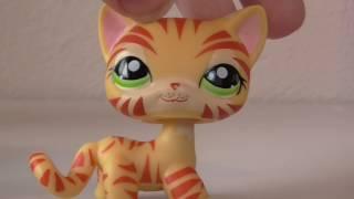 Lps: Моя коллекция стоячих кошек/My collection short cat