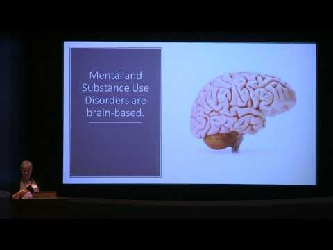 Mental Illness and Substance Use: Challenging Old and Persistent Paradigms - 2017