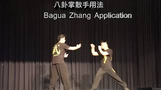 Sydney 2018 Youth Chinese Kungfu Heros Exhibition  --Bagua Push Hand and Application 八卦推手及八卦掌用法