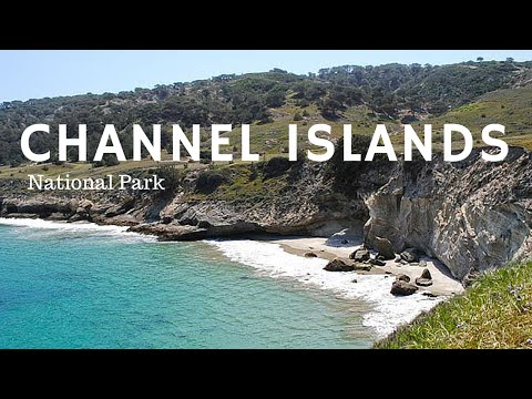 SANTA CRUZ ISLAND AND CHANNEL ISLAND NATIONAL PARK TOUR
