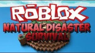 Играю Roblox Natural Disaster Survival #1