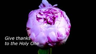 Give Thanks (karaoke-instrumental-no vocal with lyrics)