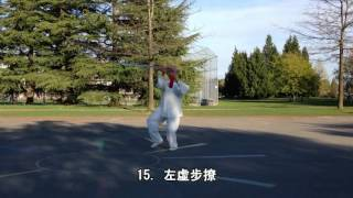 32式太極劍正向慢動作 (2015.04.07)  32 Form Tai Chi Sword Slow moving  (Front View)