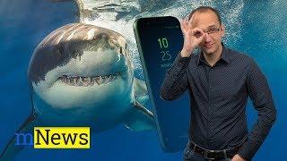 Samsung s výřezem a žralok Xiaomi - mNews