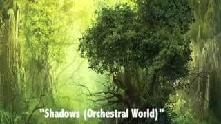 Lindsey Stirling Cover Contest - Shadows (Orchestral World)