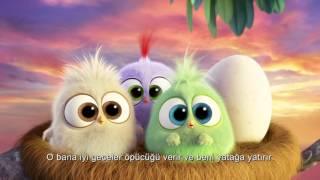 Angry Birds Film'i Civcivlerinden Annelere Mesaj!