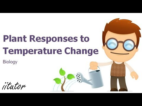√ Plant responses to Temperature change | iitutor
