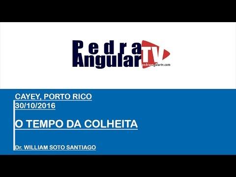30-10-2016 - TEMPO DA COLHEITA - Dr. WILLIAM SOTO SANTIAGO Ph.D - CAYEY, PORTO RICO
