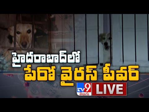 Hyderabad లో పేరో వైరస్ ఫీవర్ LIVE Updates - TV9