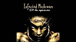 infected mushroom - i wish [Aronne Remix]