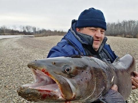 Лучшая рыбалка на блесну в 2019г/Рыба моей мечты/Таймень 22 кг/Брали 30 минут тремя лодками!!!