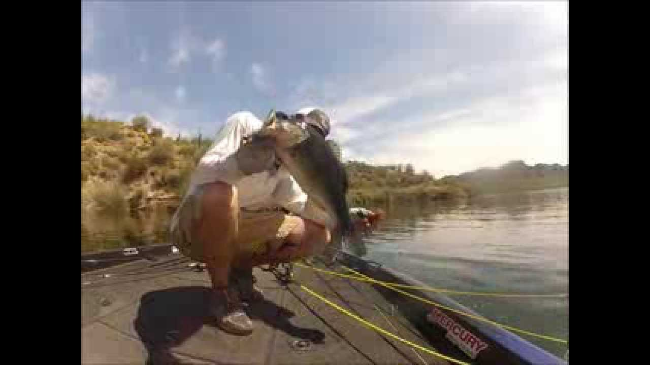 Bed fishing saguaro lake youtube for Saguaro lake fishing report