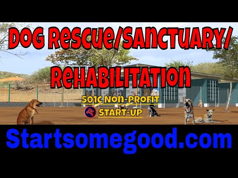 Starting a Dog Rescue/Rehab/Sanctuary on StartSomeGood.com