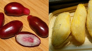 Top 10 Food To Cure Piles Hemorrhoids and Fistula