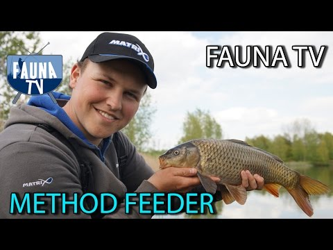 Fauna TV - Method Feeder