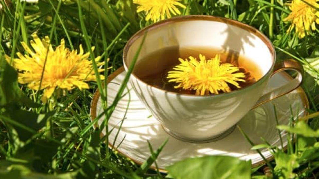 ceai de păpădie pentru slabit