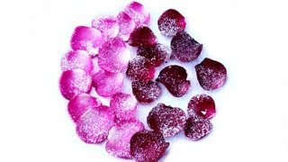 Candied Rose Petals