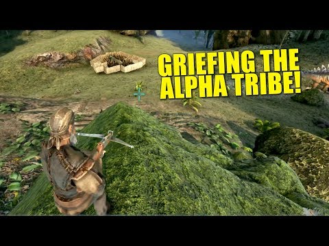 Griefing The Alpha Tribe Day 2! (Ark Pirates Official Pvp) - Ark:Survival Evolved - Ep.2