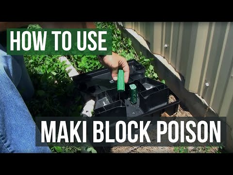 How To Get Rid Of Rats And Mice With Maki Block Poison