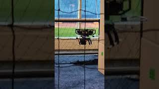 A Quick Demonstration of Fast Lightweight Autonomy