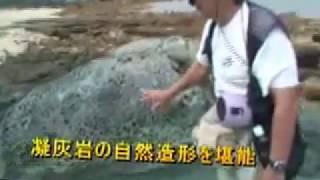 谷崎樹生自然観察会