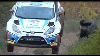 Vid�o Rallye Terre de Vaucluse 2014 Show, Mistakes et VHC par Luminy 13 (1084 vues)